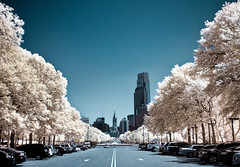 Off In The Distance. (darth_bayne) Tags: cars philadelphia ir centercity cityhall tripod surreal fantasy timer dri infraredphotography comcastbuilding offinthedistance rowoftrees hoyar72filter 1850mmsigma digitallyblended brucewberryjr darthbayne bestcapturesaoi unmodifiedcanon350d