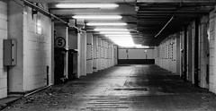 Ingenuity that would otherwise go unnoticed (Paul J White) Tags: urban bw newcastle underground grit concrete mono office toon carpark subterranean tyneside shieldfield pauljwhite streetphotographynowproject instruction4 humaningenuitythatwouldotherwisegounnoticed