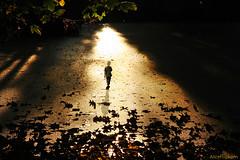 Der Weg des Lichts by AlicePopkorn - on retreat, on Flickr