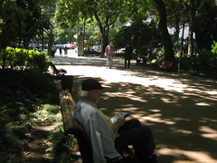 a man who reads the bad news in the shadow (MadalenaPestana) Tags: light shadow man tree green portugal garden bench europe lisboa lisbon jardimdaestrela madalenapestana gardenofestrela freesecretlife