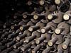 Salud! (Pankcho) Tags: dusty argentina wine bottles explore mendoza bodega vault dust vino 2007 malbec polvo botellas flickrsbest polvoriento navarrocorreas august2007 impressedbeauty agosto2007 worldphotodoc2007