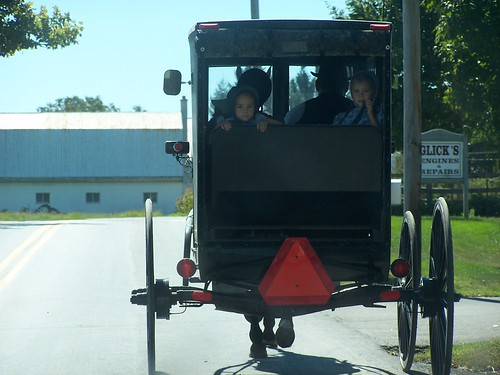 Amish Family in a Carriage