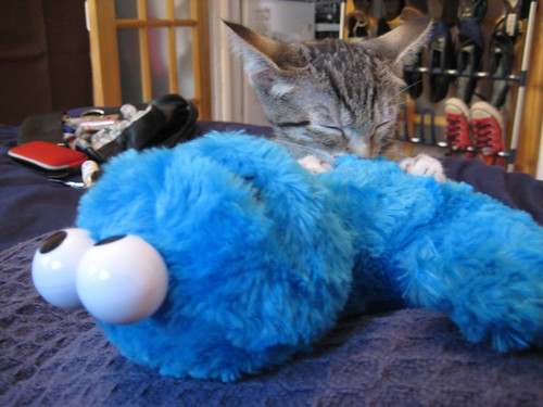 lyla and cookie monster
