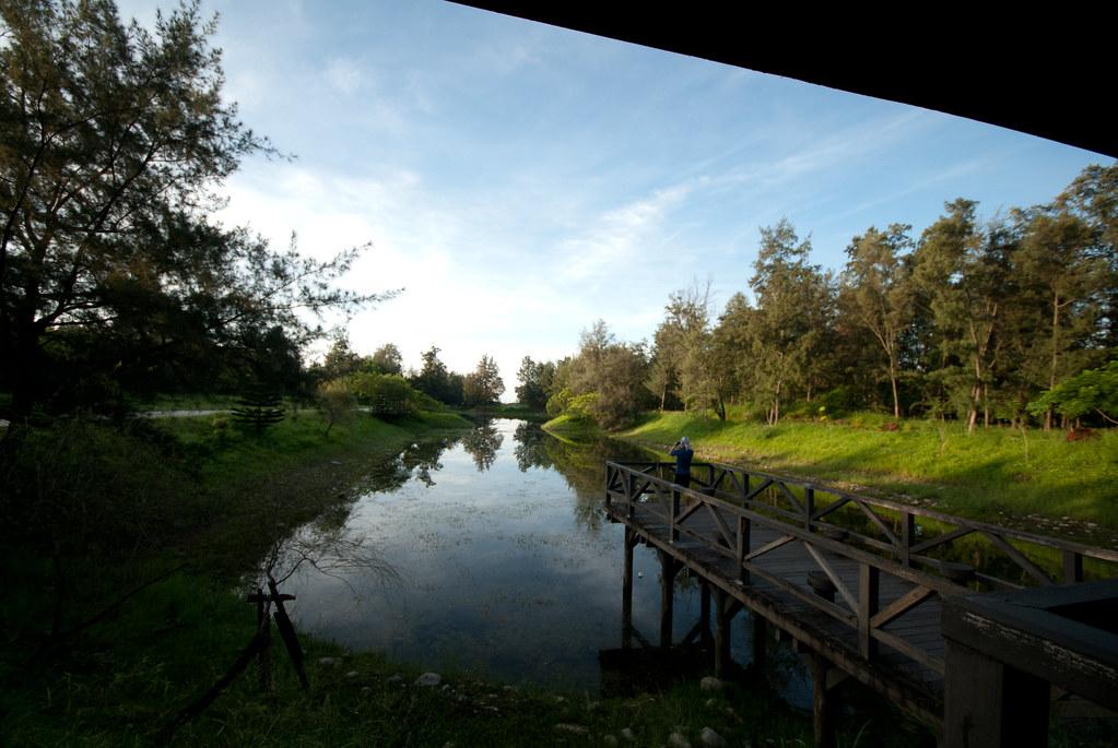 森林公園裡面的湖