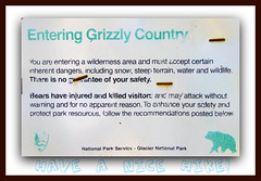 Grizzly Country, Glacier National Park (riordanNH) Tags: bear park hotel montana many glacier national service grizzly swiftcurrent