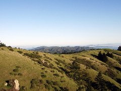 Dipsea Trail Views