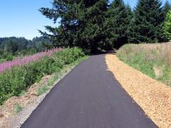 paved segment