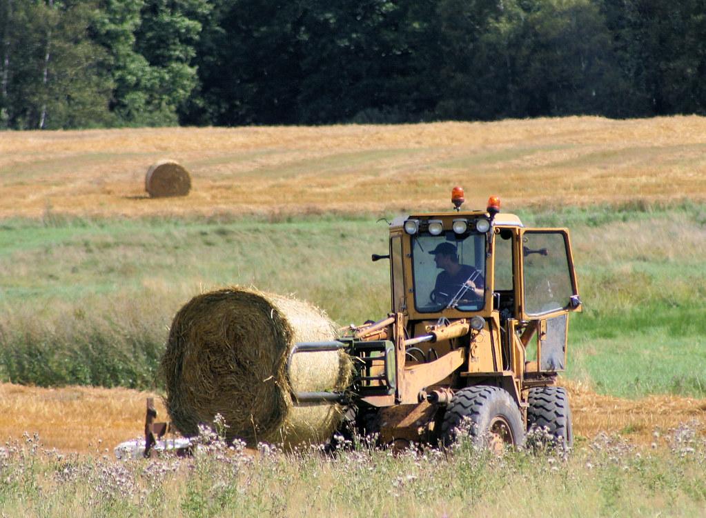 Hay Harvest IV