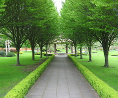 Walk in the Park (Sandra Leidholdt) Tags: park county ireland irish republic irland eire explore emeraldisle limerick irlanda adare irlande countylimerick explored sandraleidholdt lirlande leidholdt sandyleidholdt