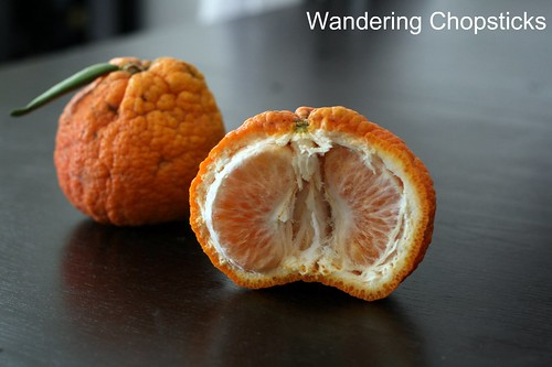 Grapefruit-sized Shasta Gold Tangerines 3