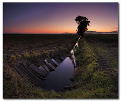 The Drain in the Field (cropped) (danishpm) Tags: sunrise canon pano australia wideangle drain nsw fields aussie aus 1020mm lonelytree murwillumbah sigmalens eos450d 450d sorenmartensen hitechgradfilters 09ndreversegradfilter