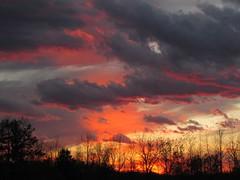 October Sky (Libra 42) Tags: trees sunset sky orange ontario canada clouds canon landscape grey powershot sooc