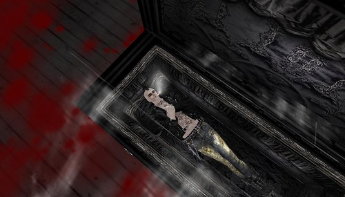 xavier in the coffin in second life