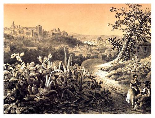 021-Vista de la Alhambra desde los nopales del Monte Sacro-Recuerdos y bellezas de España-Reino de Granada