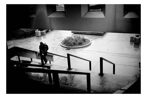 Wescoe Hall on a rainy fall morning