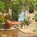 Mekong (jardin)