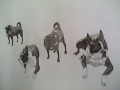 Bruno & Lulu sketch