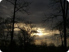 breaking through (indielove) Tags: trees shadow clouds sunrise gloomy storms photo365
