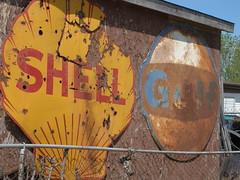 shell gulf