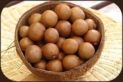 "Macadamia nuts in the coconut ""bowl"" (Tatters:)) Tags: food nuts australia qld queensland macadamia edible australiannative proteaceae macadamiaintegrifolia australianrainforestplants australianrainforesttrees mawep australianaboriginalfood nswrfp qrfp arfbtp arffs brownarffs"