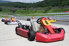 Racing Cart