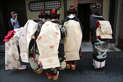 B O W I N G : Hassaku (mboogiedown) Tags: travel summer beauty japan asian japanese kyoto asia respect traditional culture august maiko geiko geisha bow kimono obi gion tradition kansai bowing hanamachi okobo hassaku kagai kobu discoverkyoto shikomi