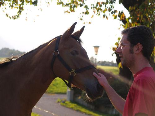 Andi der Pferdeflüsterer