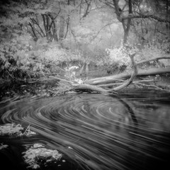 Brokenstraw Creek (eye of wally) Tags: mediumformat ir holga pennsylvania infrared holga120n warrencounty efker50 brokenstrawcreek