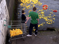 Liffey duck-fishers