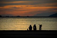 Girls Enjoying Sunest (Bracus Triticum) Tags: girls silhouette japan 日本 fukuoka enjoying kyushu futo sunest 九州 hakata 福岡県 minazuki 福岡市 水無月 rokugatsu monthofwater