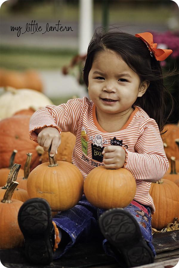 pumpkin5web