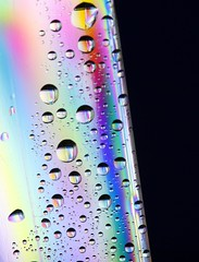 A Drop of Rainbow (Ian Hayhurst) Tags: black water droplets rainbow lcd polarized stress polarised canonef100mmf28macrousm theunforgettablepictures ccmpwaterdroplets proudshopper imhayhurst