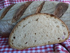 Essential's Columbia - Country French-Style Bread