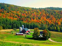 Barnet, VT (Robert Dennis Photography) Tags: new autumn england fall vermont foliage picnik barnet