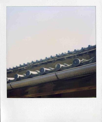 tanaka roof