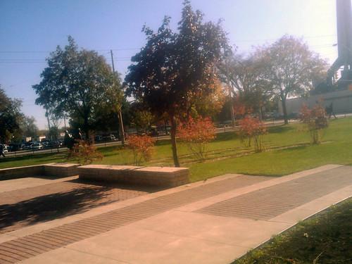 Odette Garden