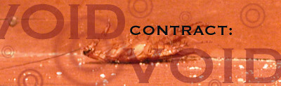 cockroach03