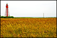 lighthouse family (jonas_k) Tags: red lighthouse green rot church yellow island wiese kirche insel gelb gras hay grn stein leuchtturm heu land ston schwedensverigesommersummer2007