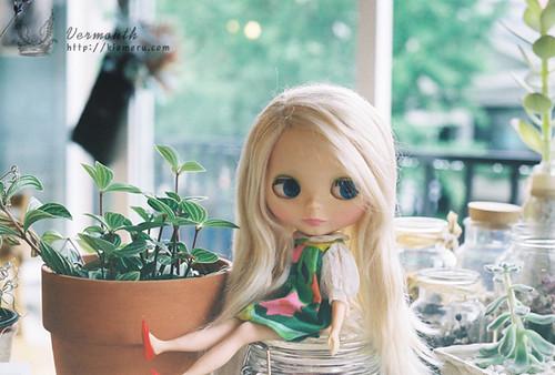 [Blythe] Risa by kiomeru.