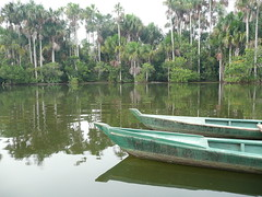 Sandoval Lake (Dave Tuck) Tags: peru rainforest amazonbasin