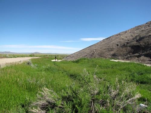 Wyoming Drive 6.25.10-8