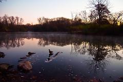 Sunrise (E_O_S) Tags: lake reflection nature water sunrise landscape illinois pretty fuji forrest peaceful calm finepix pro fujifilm picturesque sr s5 superccd