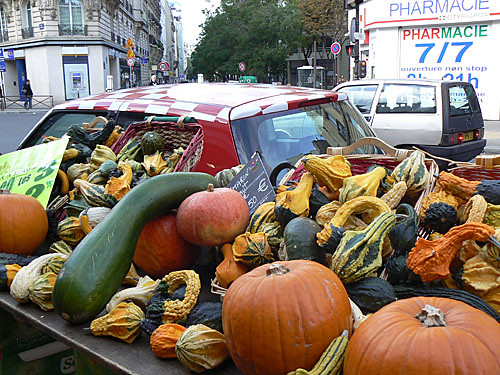 courges rue Lecourbe.jpg