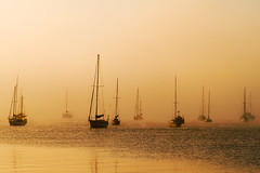 ghost ships (hoogen imagery) Tags: mist yellow fog gold golden mood atmosphere ghostship hoogenimagery