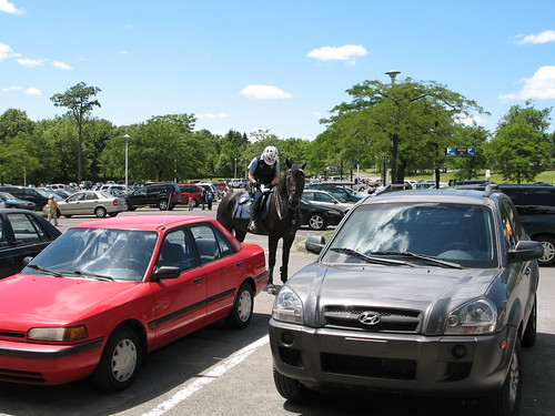 Mounted police giving parking ticket