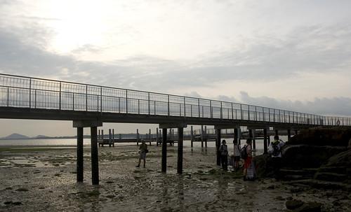 seagrassers below boardwalk