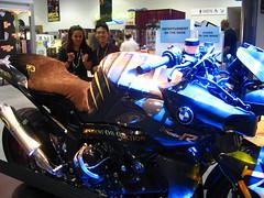 Resident Evil bike