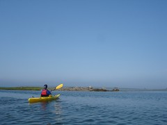 Kayaking in the sound