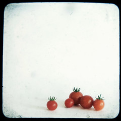 Grape Tomatoes (sandig.urbanspace) Tags: life red summer green nature fruit garden gardening tomatoes growth round organic grapetomatoes duaflex sandig urbanspace ttv ttvwhores sandigunnett sandigurbanspace sandigunnett