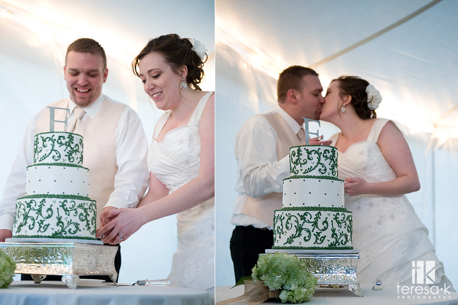 Brittany and Shaun's Grace Vineyards Wedding - Teresa K photography - Folsom Wedding photographer